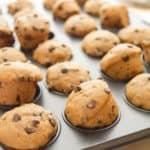 Chocolate Chip Mini Muffins (vegan)