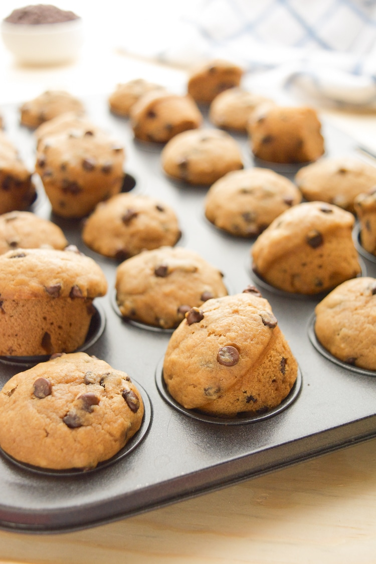 Vegan Chocolate Chip Muffins in a mini muffin pan.