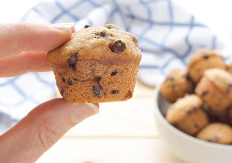 a hand holding a mini vegan Chocolate Chip Muffin with a white bowl of muffins.