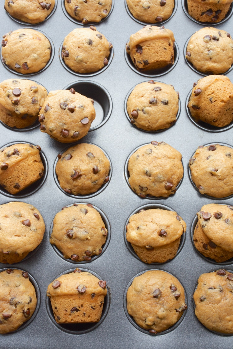 A muffin pan with min Vegan Chocolate Chip Muffins.